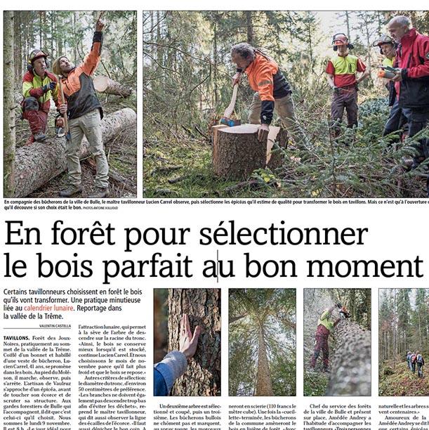 La Gruyère - En forêt pour sélectionner le bois parfait au bon moment
